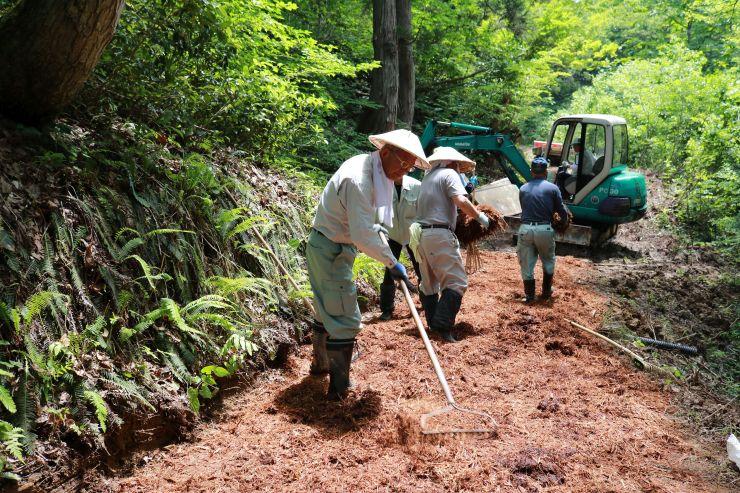 トレイルランニングの大会に向け山道のコースを整備する住民=長岡市小国町上岩田のおぐに森林公園