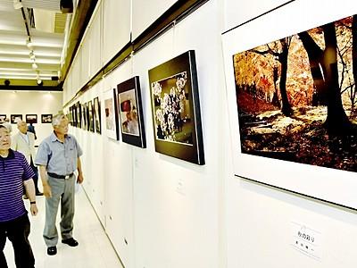 四季や日常を撮影、熟練の技光る55点 写真作家連盟展