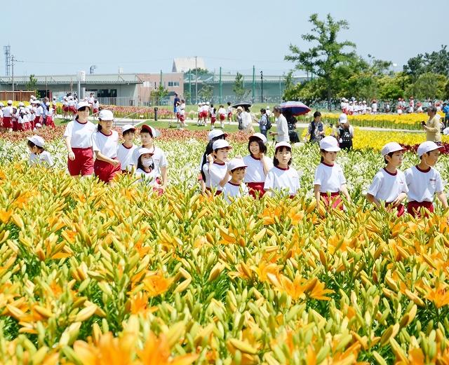色とりどりのユリが咲く園内を歩く児童=6月14日、福井県坂井市ゆりの里公園