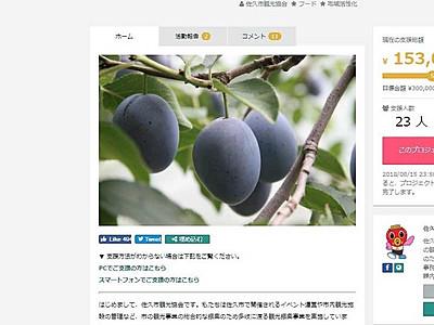 「生プルーン」魅力PR 佐久市観光協会が活動強化