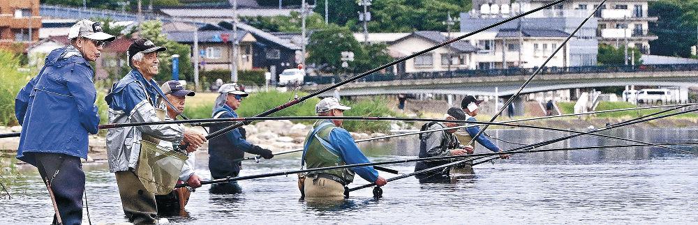 アユを狙い、竿を並べる愛好者=金沢市城南1丁目の犀川