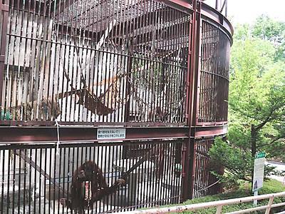 茶臼山の動物、共に育てよう 長野市が「サポーター」制度