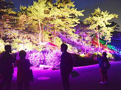 ライトアップや天空カフェも 射水「あじさい祭り」