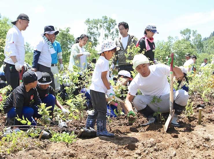 勸玄ちゃん(手前左)と苗を植える海老蔵さん(同右)=24日、山ノ内町志賀高原