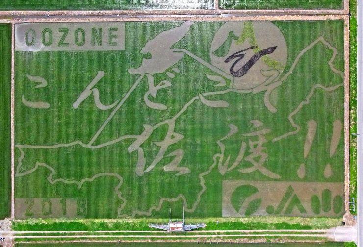 世界遺産登録を目指す佐渡金銀山を応援する田んぼアート=26日、新潟市西蒲区