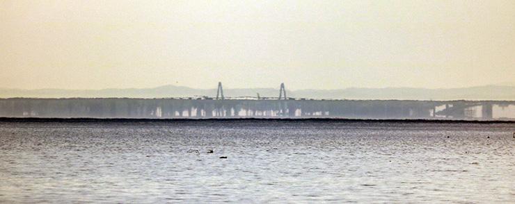 バーコード状の黒い帯の一部になって見える新湊大橋(中央)=28日午後6時10分ごろ