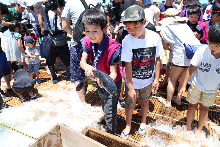新潟・福島豪雨の被害から復旧した川口やな場で魚を捕まえる子どもたち=1日、長岡市西川口