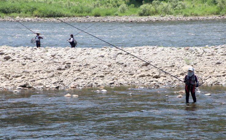 アユの友釣り解禁で魚野川を訪れた釣り客=10日、魚沼市四日町