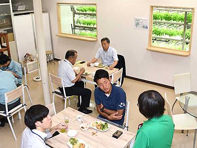 桑の風味、岡谷の味 水耕栽培工場内にレストラン開業へ