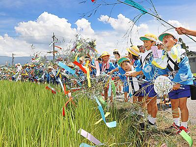 ササ竹振り豊作祈る 福光で荒木ねつおくり祭り