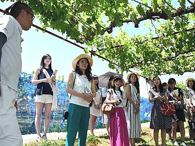 「ミス・ワイン」出場女性、塩尻で研修 27日に日本大会