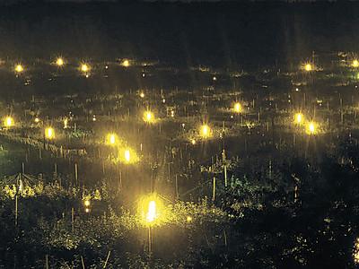 光の群れ、ナシ畑包む 加賀・奥谷町、防蛾灯1500基点灯