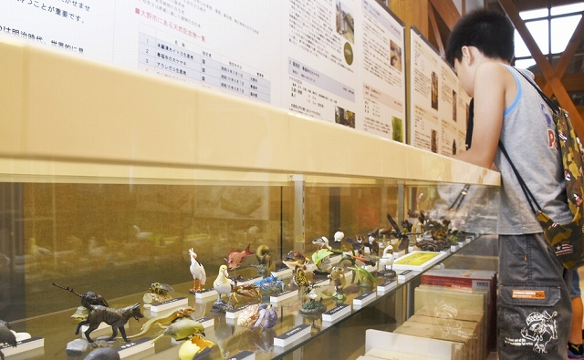 フィギュアやパネルなどが並ぶ企画展=7月27日、福井県大野市糸魚町の本願清水イトヨの里