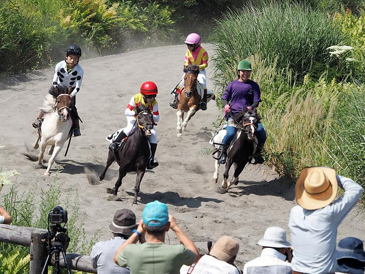コースを全力疾走する出走馬