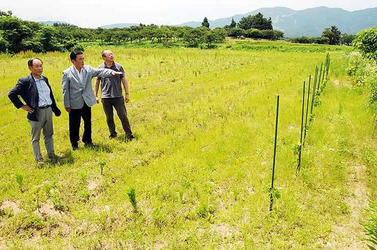 ワイン生産に取り組む土地を視察する(左から)中山さん、五天さん、谷本さん=南砺市立野ケ原