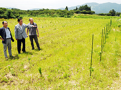 南砺でワイナリー計画 休耕地活用、年10万本生産へ