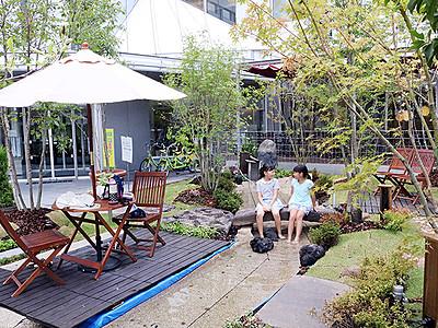 涼しい!緑の「大手モーリ」 来月9日まで富山市民プラザ