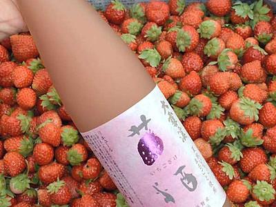 夏秋イチゴ、純米酒とブレンド あづみ農協、規格外を活用