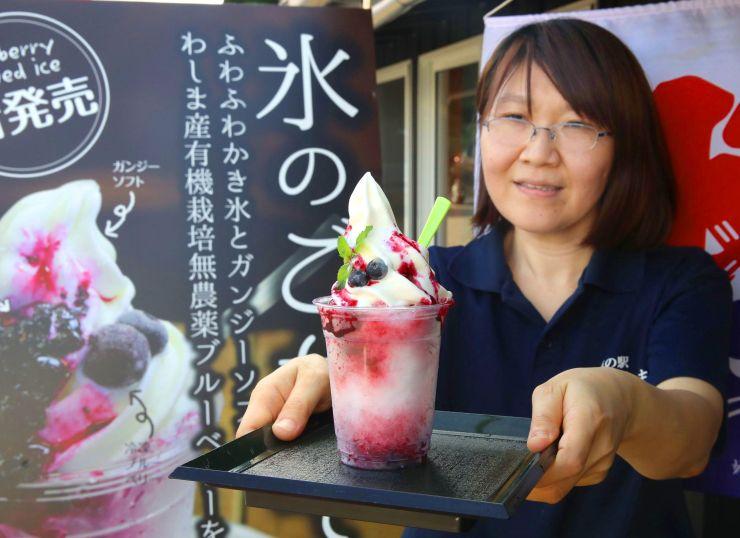 地元産のブルーベリーなどを使った「氷のごちそう」=長岡市島崎