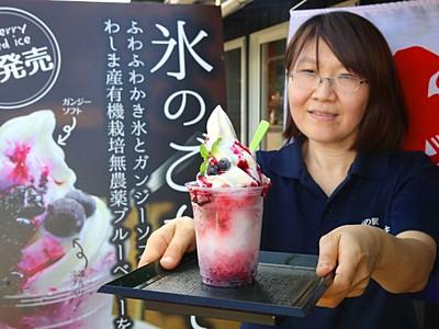 氷のごちそう好評 地元食材が一体に 長岡和島・道の駅