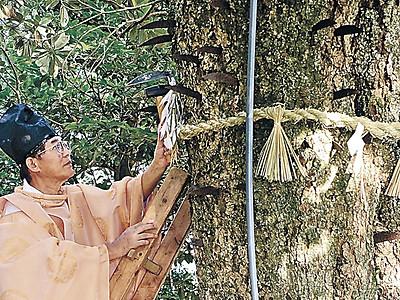 鎌打ち込み豊作を祈る 七尾、中能登で神事