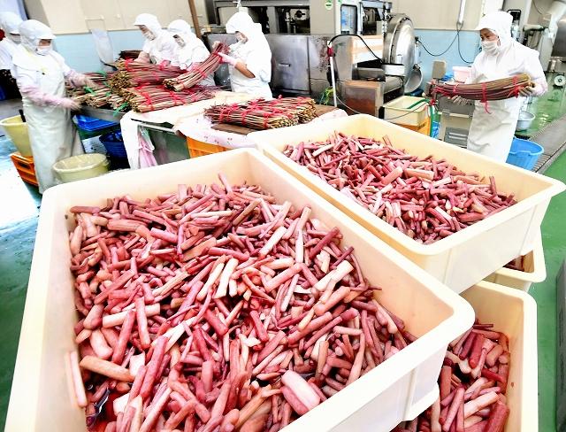 甘酸っぱい香りが漂う中、すこ作りに精を出す従業員=8月31日、福井県大野市稲郷の上庄農産加工