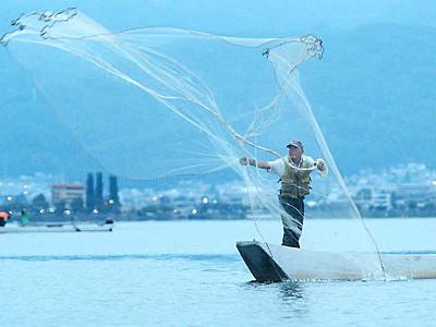 ワカサギ漁、期待の解禁 諏訪湖、初日は80キロ