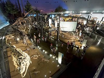 福井県立恐竜博物館、夏休み入館過去最高 米映画公開も追い風