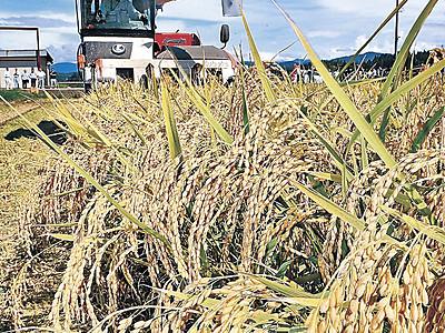 ひゃくまん穀収穫 小松で本格的に