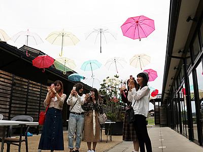 カラフル傘55本、オープンテラス飾る ひみ番屋街