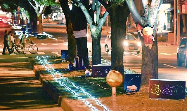 1万2千個のLED電球が並木を彩った「ケヤキ夢灯り2018」=9月24日夜、福井県福井市手寄2丁目