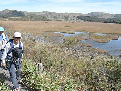 八島ケ原に「草紅葉」広がる 秋色に染まる湿原