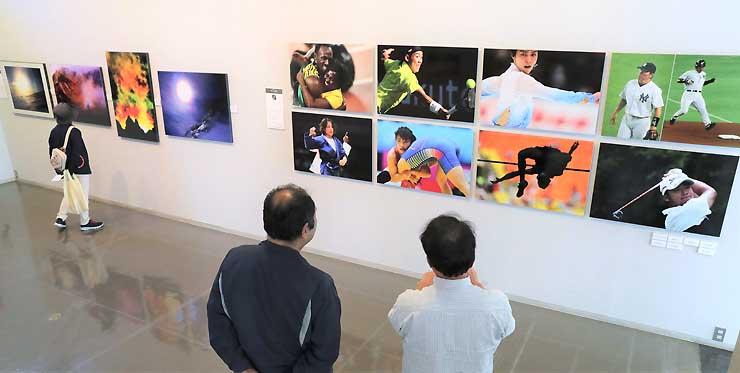 個性あふれる作品が並ぶ写真展の会場
