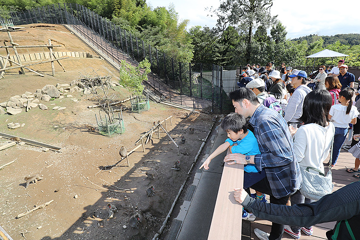 里山生態園のサルを見る子どもたち=富山市ファミリーパーク