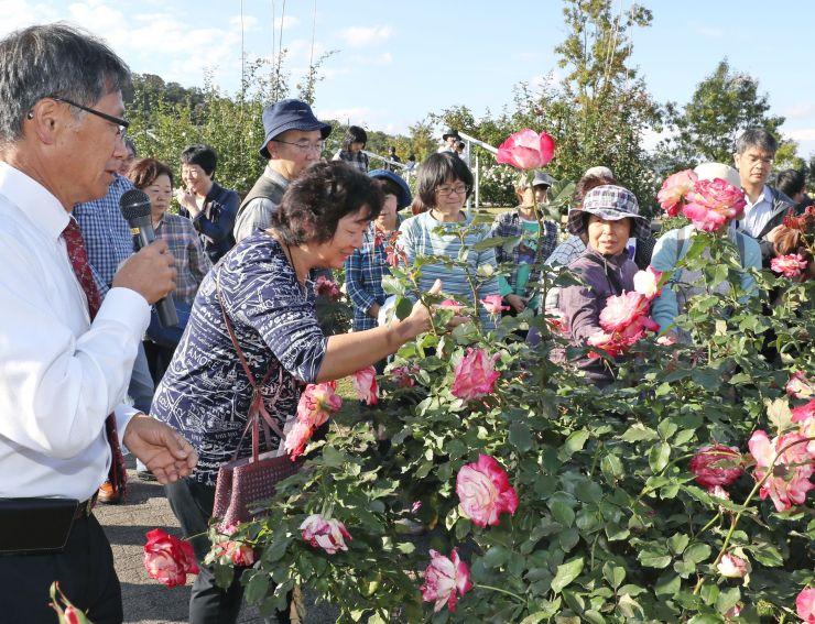 品種ごとの香りの違いを楽しんだバラ園のツアー=14日、長岡市の国営越後丘陵公園