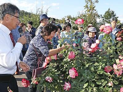バラの「香り」楽しむ催し 長岡・越後丘陵公園