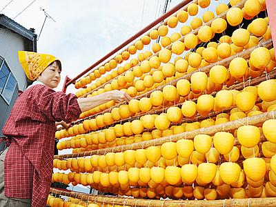「あんぽ柿」の生産本格化 福光