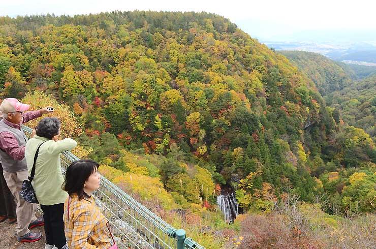 鮮やかな紅葉に彩られた横谷渓谷。王滝(中央下)もくっきりと浮かび上がった