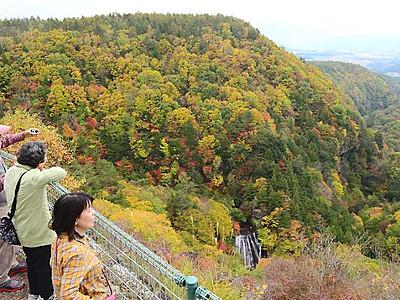 滝の流れ、覆う紅葉 茅野・横谷渓谷