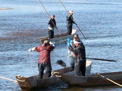 サケの居繰り網漁始まる 村上・三面川