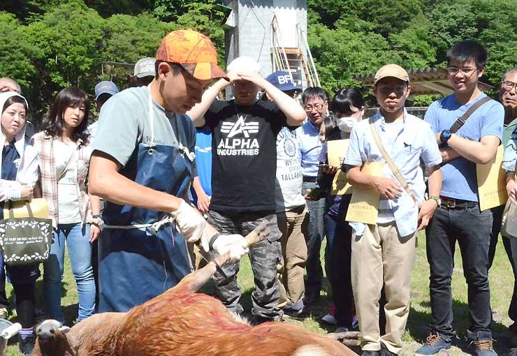 飯伊連合猟友会が6月に開いた講座で鹿の解体を見る参加者