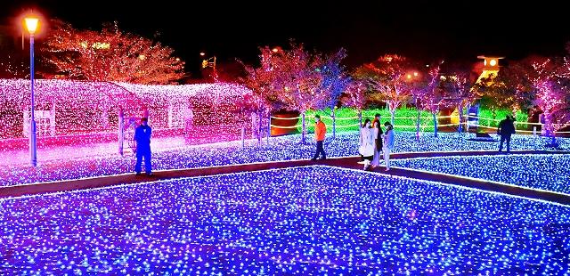 試験点灯され、幻想的な光に包まれた「ミライエ」会場=11月1日午後6時40分ごろ、福井県敦賀市の金ケ崎緑地