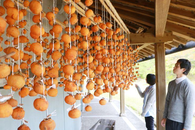 軒下につるされ、甘い香りを放つ干し柿=関川村