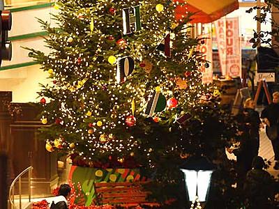 Xmasムード、高鳴る胸 松本に6メートルのツリー