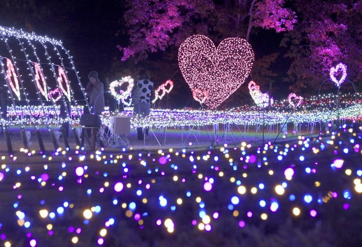 国営アルプスあづみの公園大町・松川地区を彩るイルミネーション=2日