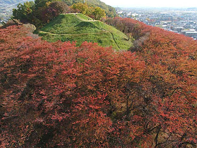 古墳、秋色の縁取り 松本・弘法山の桜