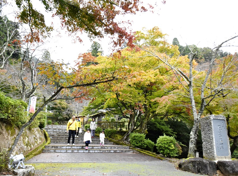 モミジが色づき始めた花筐公園=11月4日、福井県越前市粟田部町