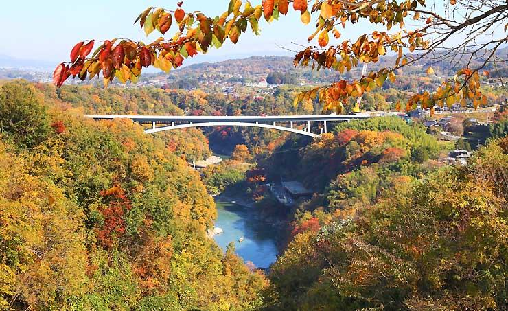 周囲の紅葉に彩られた建設中の「天龍峡大橋」=8日、飯田市