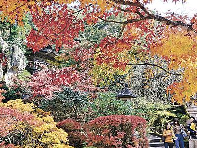 紅葉、境内染める 小松・那谷寺、最盛期