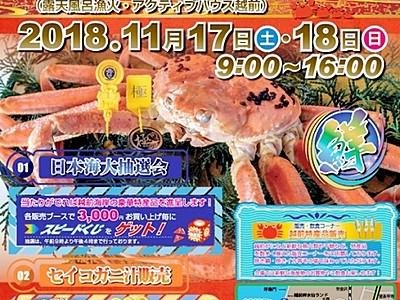 福井の冬の味覚「越前がに」食べに越前町に行こう